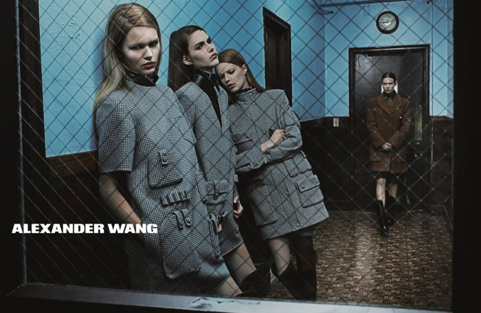Alexander_Wang_Fall_Winter_2014_2015_ad_1-700x455