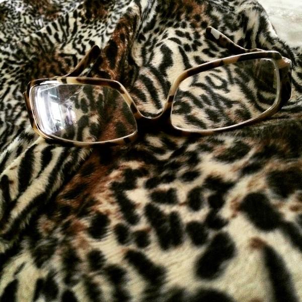 LeopardOnLeopard