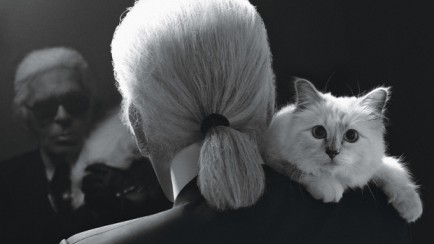 header_image_Fustany_-_Article_Main_-_News_-_Karl_Lagerfeld_and_his_cat